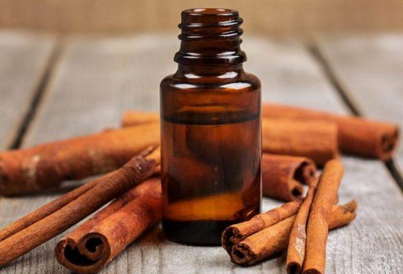 does cinnamon kill viruses1